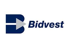 IT recruitment for Bidvest