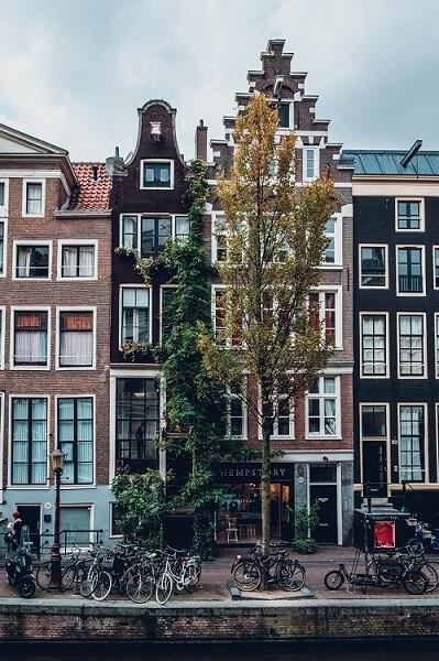 Netherlands SAP 2
