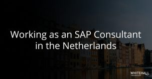 Working as an SAP consultant in the Netherlands