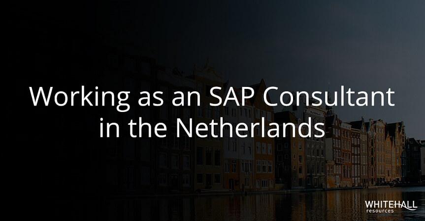 SAP Consultant Netherlands